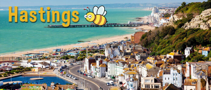 automatic driving lessons hastings